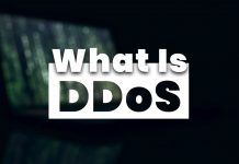 What Is DDoS